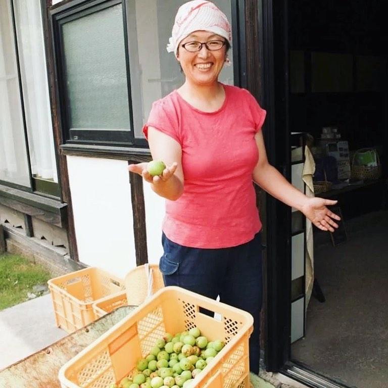 〈6/30梅干しレッスン用の梅収穫!〉「自然栽培梅農家・岩田紀子さんと『瓶干し梅干し』を作ろう!」(オンライン)(2021.06.28)