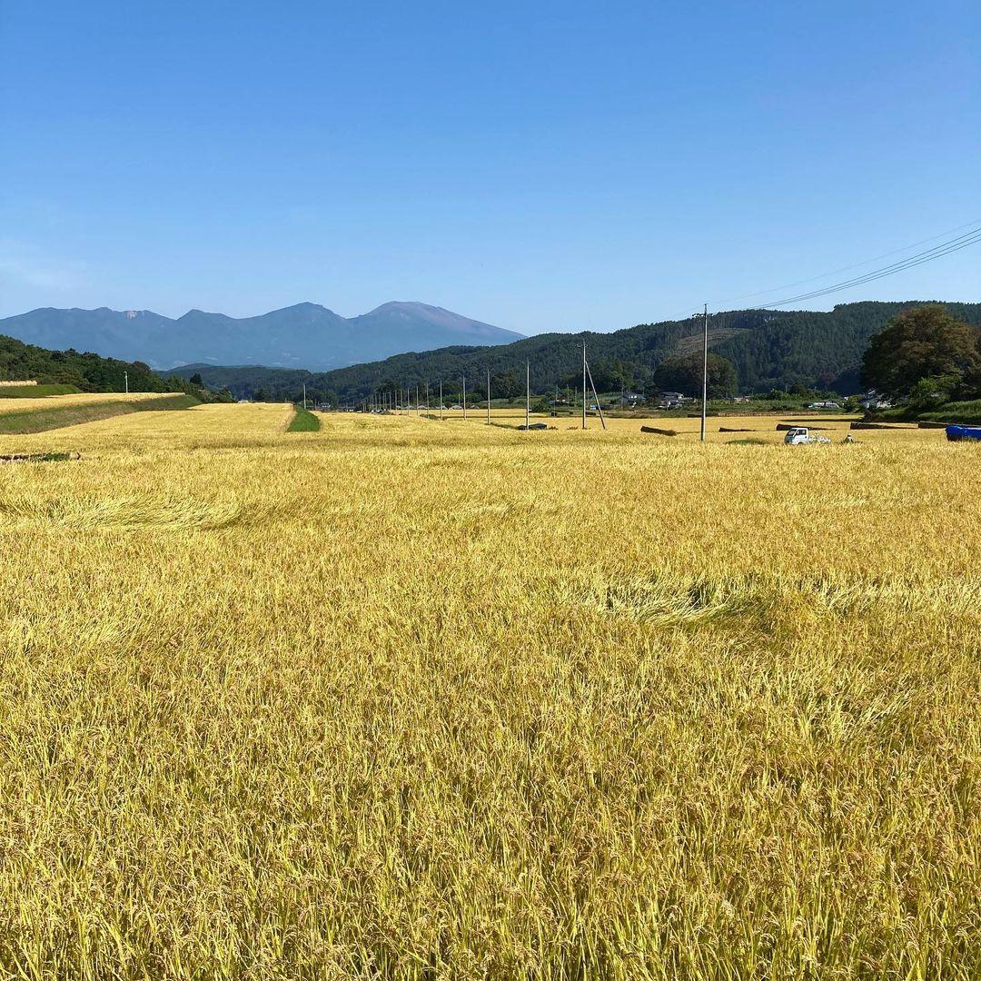 実りの秋、長野(2021.10.06)